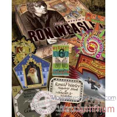 Boite d\\\'artefacts ron weasley Noble Collection -NN7432