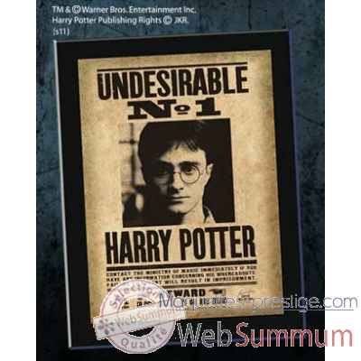 "Plaque ""undesirable n1\"" harry potter Noble Collection -NNXT0023"